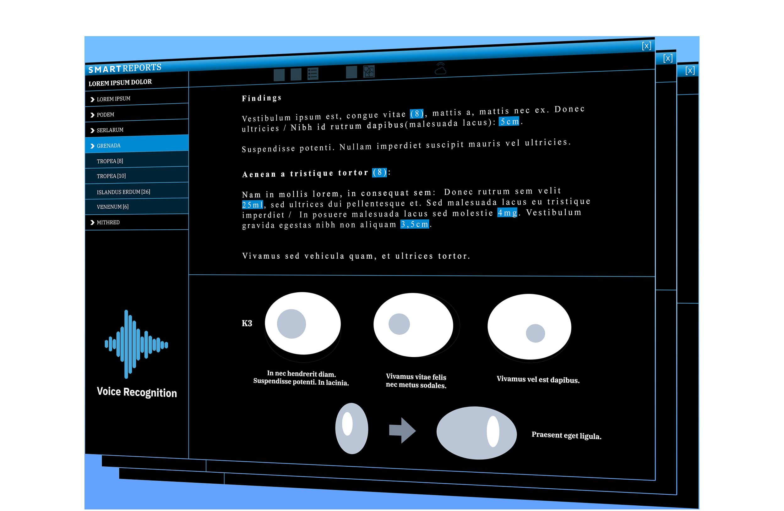 Smart Reports Header